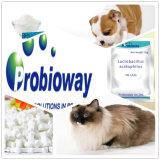Высокорадиоактивная собака поставляет бациллу поддержку активно культур Probiotics желудочно-кишечную