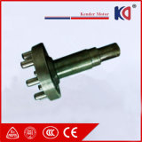 Het cirkelvormige (Cyclo) Reductiemiddel van de Versnellingsbak met AC Elektrische Motor