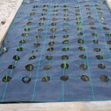 100GSM重義務Weed Control Woven Fabric Ground Cover Mulch Membrane