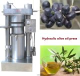 Kalte Olivenöl-Presse mit hohem Öl-Ertrag