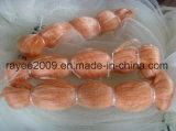 Rete di nylon arancione dei pesci dell'attrezzatura di pesca del monofilamento