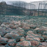 Cestino catturante con la rete esagonale di Gabion della casella di Gabion