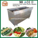 商業オゾン洗剤の台所野菜洗浄の流し