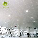 مكتب زخرفيّة مادّيّة ألومنيوم ثقب شاشة [كليب-ين] [سيلينغ بنل] سقف لون تصميم