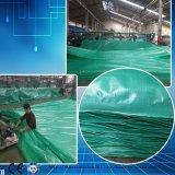 Het blauwe Waterdichte Plastic Geteerde zeildoek van de Vrachtwagen van de Dekking van het Dakwerk Vuurvaste