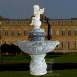 Fontein van de Steen van de Eigenschap van het Water van het Beeldhouwwerk van de Decoratie van de tuin de Marmeren