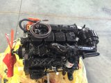 Горячая продажа Взрывозащищенный дизельного двигателя с двигателем Cummins4102zqfb Jst