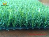 Erba di moquette artificiale del polietilene per la piscina