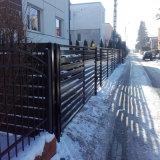 私邸のための金属の塀の庭の塀