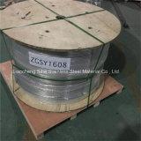 SS304 Tuyau en acier inoxydable sans soudure bobine serpentins en acier inoxydable