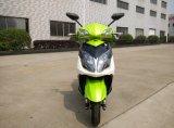 motorino 2000W con la batteria di litio Citycoco Motorino una rotella da 10 pollici