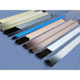 Le mattonelle assettano il tipo delle mattonelle ed il testo fisso accessori delle mattonelle dell'acciaio inossidabile