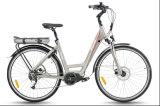 Modelo de la ciudad bicicleta eléctrica con la mitad de Motor de accionamiento (TDB12Z)