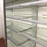Refrigerador abierto enfriado supermercado de la visualización de la legumbre de fruta