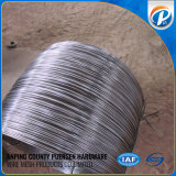 2 mm Hard Nail Wire
