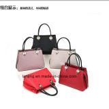 Borse delle donne dei sacchetti delle borse della borsa dei sacchetti di cuoio del progettista