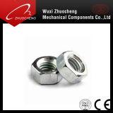 Noix 316 Hex de l'acier inoxydable 304 d'OIN 4032 de l'écrou six-pans DIN934 pour toute la taille