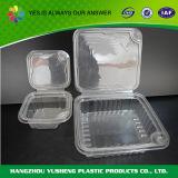 Verpakkende Container Clamshell voor Aardbei