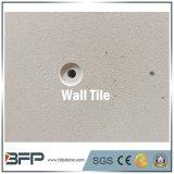 Tuile beige de mur de marbre de couleur de fournisseur chinois pour d'intérieur/extérieur