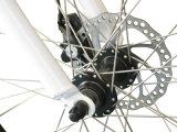 """26 """" شاطئ طرّاد مؤخّرة محرّك درّاجة كهربائيّة سمينة [كمس-تد10ز]"""