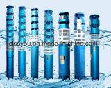 6 8 bomba de água elétrica submergível do poço profundo de 10 polegadas para a irrigação