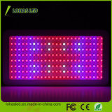 Hydroponic 고성능 LED 플랜트 빛 1200W 가득 차있는 스펙트럼은 빛을 증가한다