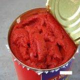 Compléter la chaîne de production automatique de sauce tomate