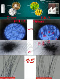 Fibra do edifício do cabelo do tratamento da calvície do cabelo humano de produtos novos