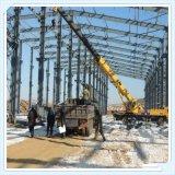 Structure 2016 préfabriquée neuve de bâti en acier de Wiskind