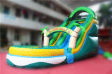 Dia van het Water van Guangzhou de Tropische Opblaasbare met Pool (chsl250s-1)