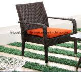屋外のソファー(TG-1300)のためのPEの藤及びアルミニウム家具