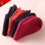 Il colore puro delle donne del calzino delle lane di alta qualità colpisce con forza all'ingrosso