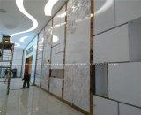 Metal de oro para puertas de espejo Windows Material acero inoxidable de color