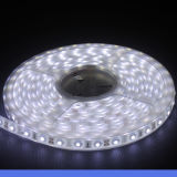호리호리한 가벼운 상자를 위한 5050의 LED 지구 30LED/M