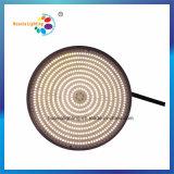 수지에 의하여 채워지는 LED PAR56 전구 수영풀 빛