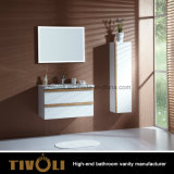 Het moderne Kabinet van de Badkamers van het Ontwerp In het groot Witte Schilderende (V001)