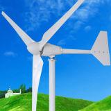 generador de imán permanente horizontal de las láminas del generador de turbina de viento del eje 1000W 3