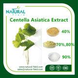 Totale Triterpeen 80% van het Uittreksel van de Installatie van 100% de Natuurlijke Asiatica Uittreksel Centella