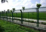 PVC에 의하여 입히는 용접된 철망사 담 (공장도 가격)