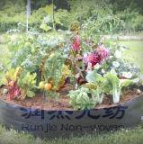 Das nichtgewebte intelligente Gewebe wachsen Potenziometer/Garten wachsen Bags/Plant Behälter