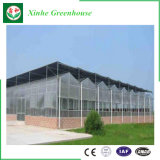 植わることのための情報処理機能をもったマルチスパンのポリカーボネートシートの温室