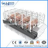 Клеть беременность клети свиньи оборудования свиньи