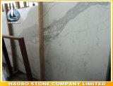 Marmeren Kwaliteit van het Sneeuwwitje van de fabriek de Directe