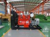 Generatore di legno a tre fasi standard del gas 300W di CA del Ce globale del mercato da vendere