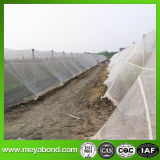Clouded Factory Wholesale Plastic Anti Hail Net/Insect Net Mesh Plant Covers for Greenhouse