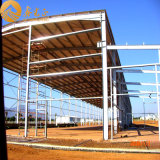 Magazzino diplomato Ce della struttura d'acciaio di iso (SS14798)