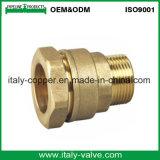Gomito maschio Bronze ad alta pressione dell'OEM (AV-QT-1030)