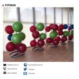 Gimnasio Ball soporte de almacenamiento de 5pcs