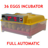 Le poulet automatique de certificat de la CE de qualité de 36 oeufs Eggs l'incubateur