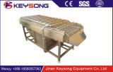 Wasmachine van de Borstel van de Wasmachine van de Borstel van de hoge Capaciteit de Plantaardige Plantaardige